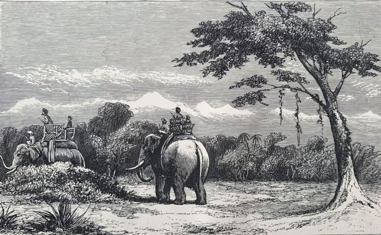 The large and small game of Bengal and the north-western provinces of India. Captain J. H. BALDWIN.